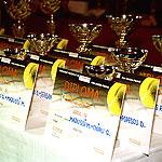 Premii turneu tenis
